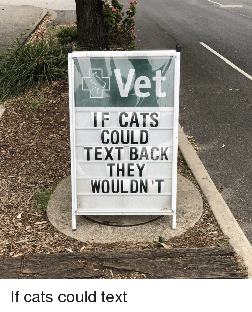 Text Back: IF CATS  COULD  TEXT BACK  THEY  WOULDN 'T If cats could text
