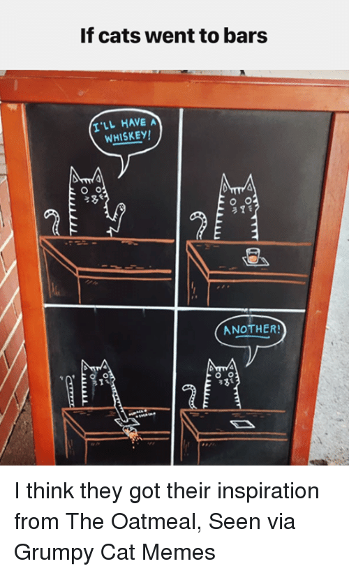 Grumpy Cats: If cats went to bars  I'LL HAVE A  WHISKEY!  O Or  O O  2 7 f  ANOTHER!  O O  33 I think they got their inspiration from The Oatmeal, Seen via Grumpy Cat Memes
