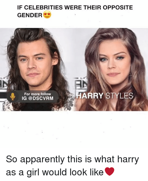 Apparently, Memes, and Girl: IF CELEBRITIES WERE THEIR OPPOSITE  GENDER  HARRY STYLES  For more follow  IG DSCVRM So apparently this is what harry as a girl would look like❤️