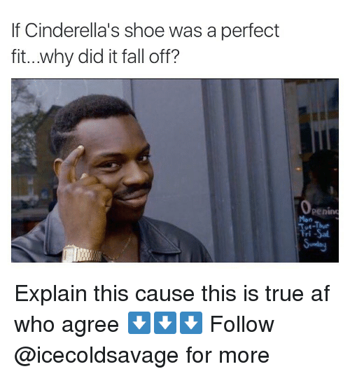 Its Fall: If Cinderella's shoe was a perfect  fit...why did it fall off? Explain this cause this is true af who agree ⬇️⬇️⬇️ Follow @icecoldsavage for more