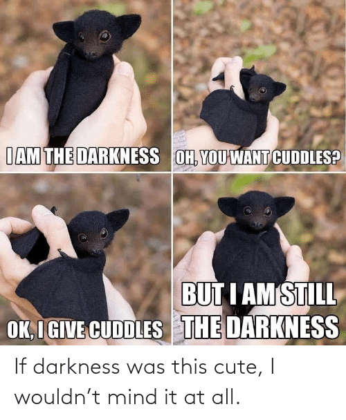 darkness: If darkness was this cute, I wouldn't mind it at all.