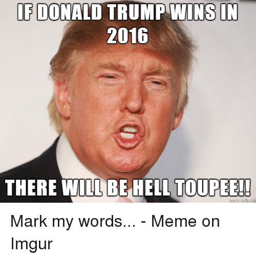 toupee: IF DONALD TRUMP WINS IN  2016  THERE WILL BE HELL TOUPEE!! Mark my words... - Meme on Imgur