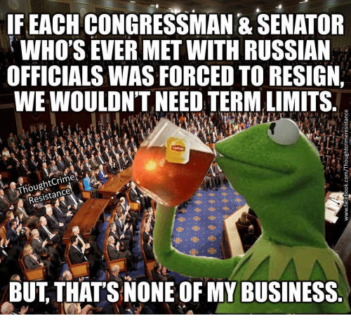 Resigne: IF EACH CONGRESSMAN & SENATOR  WHO'S EVER MET WITH RUSSIAN  OFFICIALSWASFORCED TO RESIGN  WEWOULDN'T NEED TERMALIMITS  Resistance  BUT THAT'S NONE OF MY BUSINESS