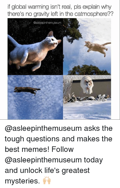 Globalization: if global warming isn't real, pls explain why  there's no gravity left in the catmosphere??  Oasleepinthemuseum @asleepinthemuseum asks the tough questions and makes the best memes! Follow @asleepinthemuseum today and unlock life's greatest mysteries. 🙌🏼