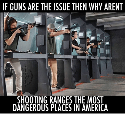 America, Guns, and Memes: IF GUNS ARE THE ISSUE THEN WHY ARENT  SHOOTING RANGES THE MOST  DANGEROUS PLACES IN AMERICA