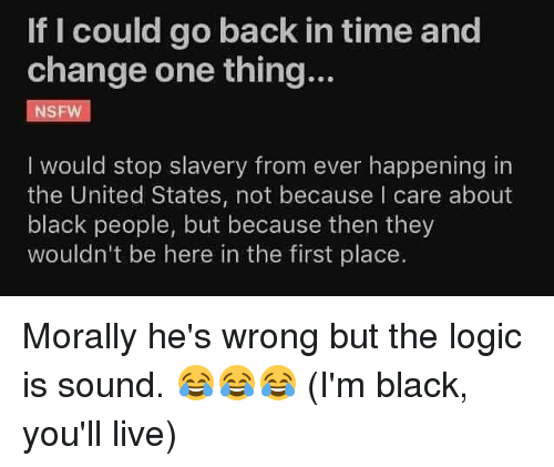 Logic, Memes, and Nsfw: If I could go back in time and  change one thing...  NSFW  I would stop slavery from ever happening in  the United States, not because I care about  black people, but because then they  wouldn't be here in the first place. Morally he's wrong but the logic is sound. 😂😂😂 (I'm black, you'll live)