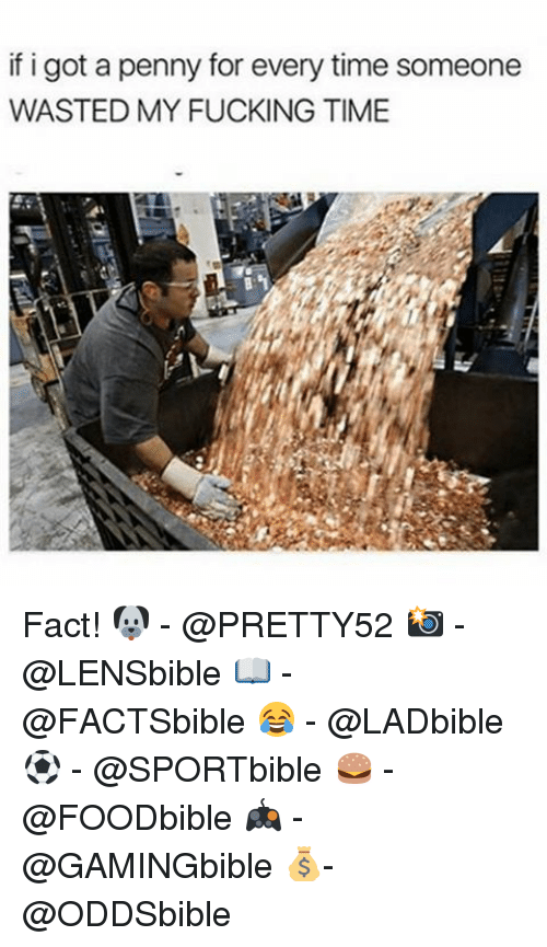 Fucking, Memes, and Time: if i got a penny for every time someone  WASTED MY FUCKING TIME Fact! 🐶 - @PRETTY52 📸 - @LENSbible 📖 - @FACTSbible 😂 - @LADbible ⚽ - @SPORTbible 🍔 - @FOODbible 🎮 - @GAMINGbible 💰- @ODDSbible
