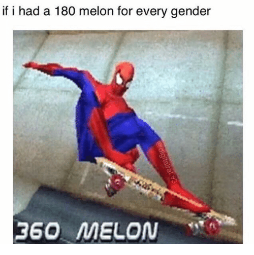 Melonism: if i had a 180 melon for every gender  360 MELON