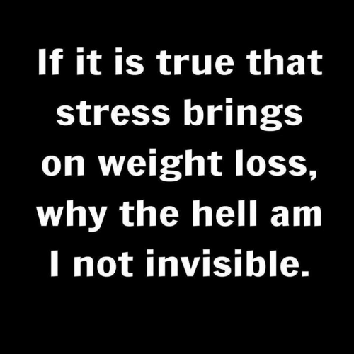 True That: If it is true that  stress brings  on weight loss,  why the hell am  I not invisible.