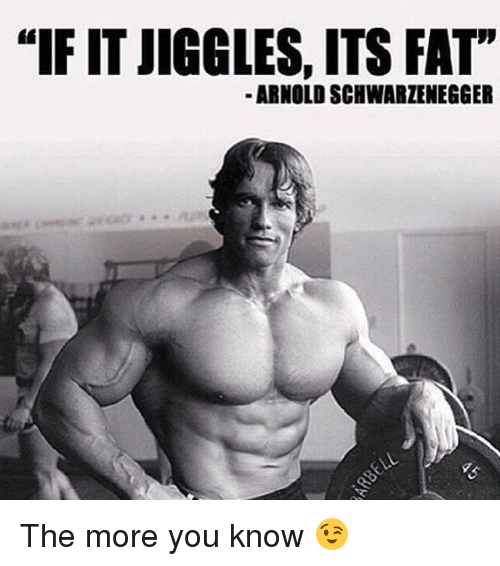 "Arnold Schwarzenegger, Memes, and The More You Know: ""IF IT JIGGLES, ITS FAT""  ARNOLD SCHWARZENEGGER The more you know 😉"