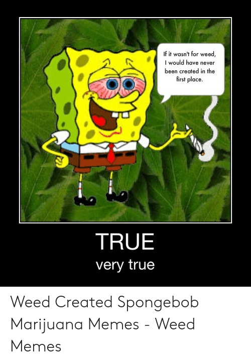 Marijuana Memes: If it wasn't for weed,  I would have never  been created in the  first place.  TRUE  very true Weed Created Spongebob Marijuana Memes - Weed Memes