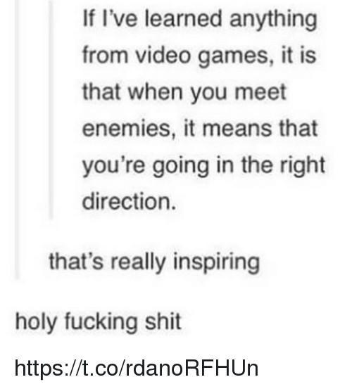 Fucking, Memes, and Shit: If I've learned anything  from video games, it is  that when you meet  enemies, it means that  you're going in the right  direction.  that's really inspiring  holy fucking shit https://t.co/rdanoRFHUn