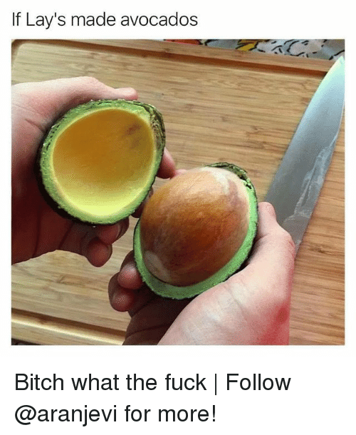 Bitch, Lay's, and Memes: If Lay's made avocados Bitch what the fuck | Follow @aranjevi for more!