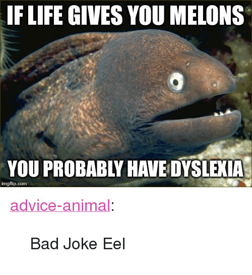 "bad joke eel: IF LIFE GIVES YOU MELONS  YOU PROBABLY HAVE DYSLEXIA  imgflip.com <p><a href=""http://advice-animal.tumblr.com/post/171039751623/bad-joke-eel"" class=""tumblr_blog"">advice-animal</a>:</p>  <blockquote><p>Bad Joke Eel</p></blockquote>"
