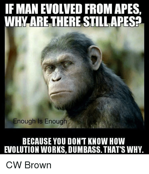 Memes, Browns, and Evolution: IF MAN EVOLVED FROM APES  WHY ARE THERE STILLAPES2  Enough Is Enough  BECAUSE YOU DONT KNOW HOW  EVOLUTION WORKS, DUMBASS. THAT'S WHY. CW Brown