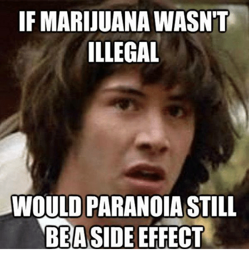 Illegalize: IF MARIJUANA WASNT  ILLEGAL  WOULD PARANOIA STILL  BEASIDE EFFECT