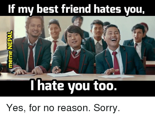 Reasons For No Other I Hate You Meme