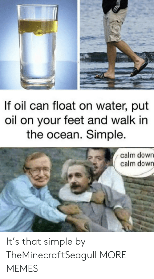 float: If oil can float on water, put  oil on your feet and walk in  the ocean. Simple.  calm down  calm down It's that simple by TheMinecraftSeagull MORE MEMES