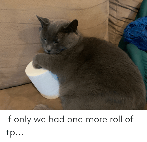 One More: If only we had one more roll of tp...
