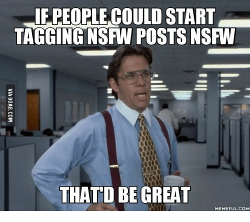 Thatd Be Great Meme: IF PEOPLE COULD START  TAGGING NSFW POSTS NSFW  THATD BE GREAT  MEMEFUL.COM
