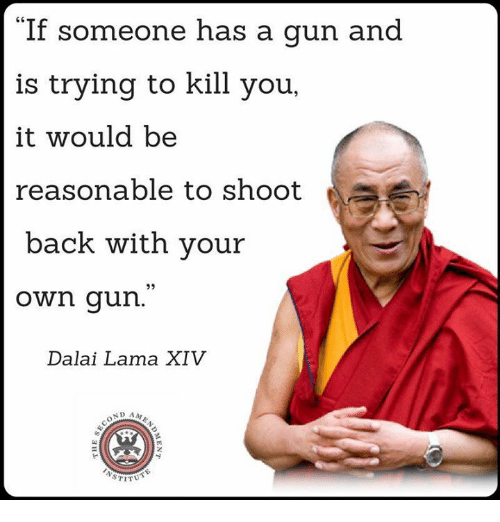 Guns, Memes, and Dalai Lama: If someone has a gun and  is trying to kill you  it would be  reasonable to shoot  back with your  own gun  Dalai Lama XIV  ND AA  STITUT