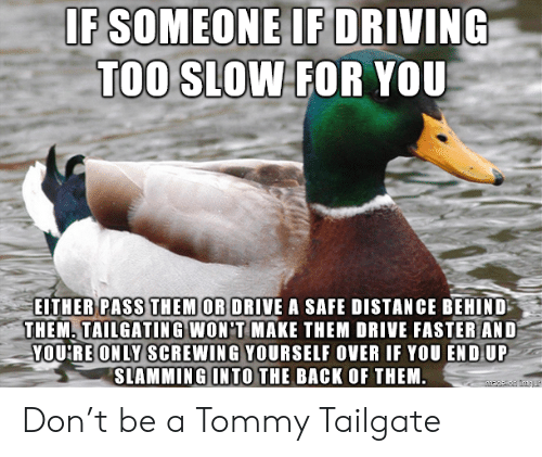 tailgating: IF SOMEONE IF DRIVING  TOO SLOW FOR YOU  EITHER PASS THEM OR DRIVE A SAFE DISTANCE BEHIND  THEM. TAILGATING WON'T MAKE THEM DRIVE FASTER AND  YOURE ONLY SCREWING YOURSELF OVER IF YOU END UP  SLAMMING INTO THE BACK OF THEM Don't be a Tommy Tailgate