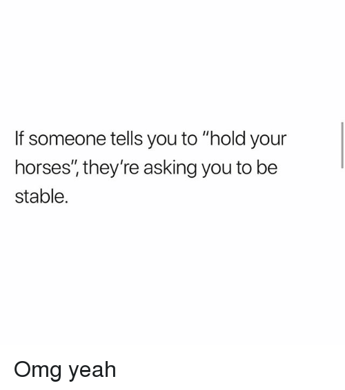 "Horses, Memes, and Omg: If someone tells you to ""hold your  horses, they're asking you to be  stable. Omg yeah"