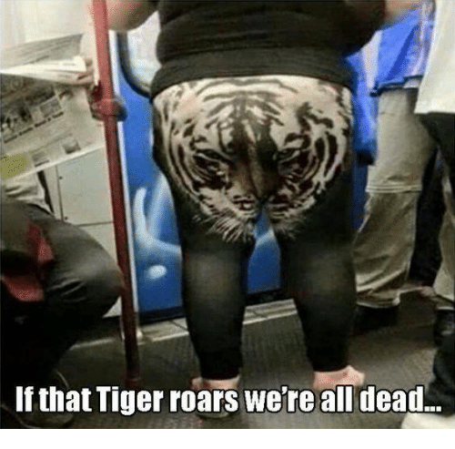 Memes, Tiger, and Tigers: If that Tiger roars we're all dead.