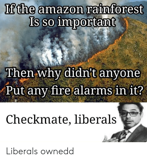 Liberals: If the amazon rainforest  Is so important  Then why didnt anyone  Put any fire alarms in it?  Checkmate, liberals Liberals ownedd