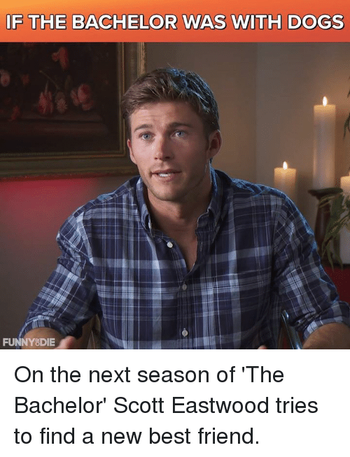 Best Friend, Dank, and Dogs: IF THE BACHELOR WAS WITH DOGS  FUNNY DIE On the next season of 'The Bachelor' Scott Eastwood tries to find a new best friend.