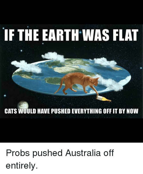 Cats, Memes, and Australia: IF THE EARTH WAS FLAT  CATS WOULD HAVE PUSHED EVERYTHING OFF IT BY NOW Probs pushed Australia off entirely.