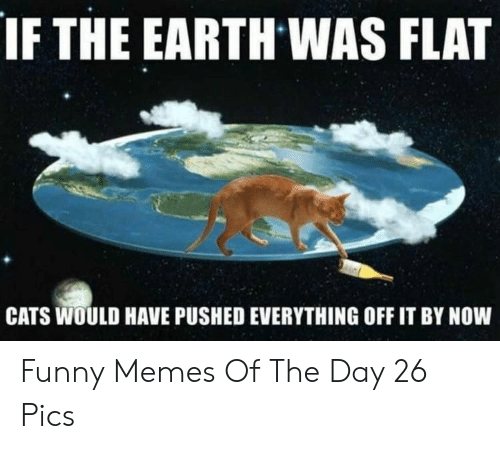Pushed: IF THE EARTH WAS FLAT  CATS WOULD HAVE PUSHED EVERYTHING OFF IT BY NOW Funny Memes Of The Day 26 Pics