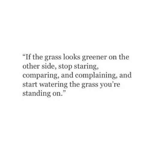 """stop staring: """"If the grass looks greener on the  other side, stop staring,  comparing, and complaining, and  start watering the grass you're  standing on."""