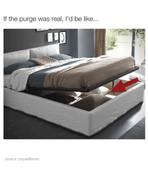 The Purge: If the purge was real, l'd be like...  Source: pizzaaftersex