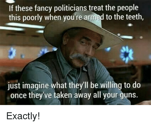 Guns, Memes, and Taken: If these fancy politicians treat the people  this poorly when you're armed to the teeth,  S1  just imagine what they'll be willing to do  once they've taken away all your guns Exactly!