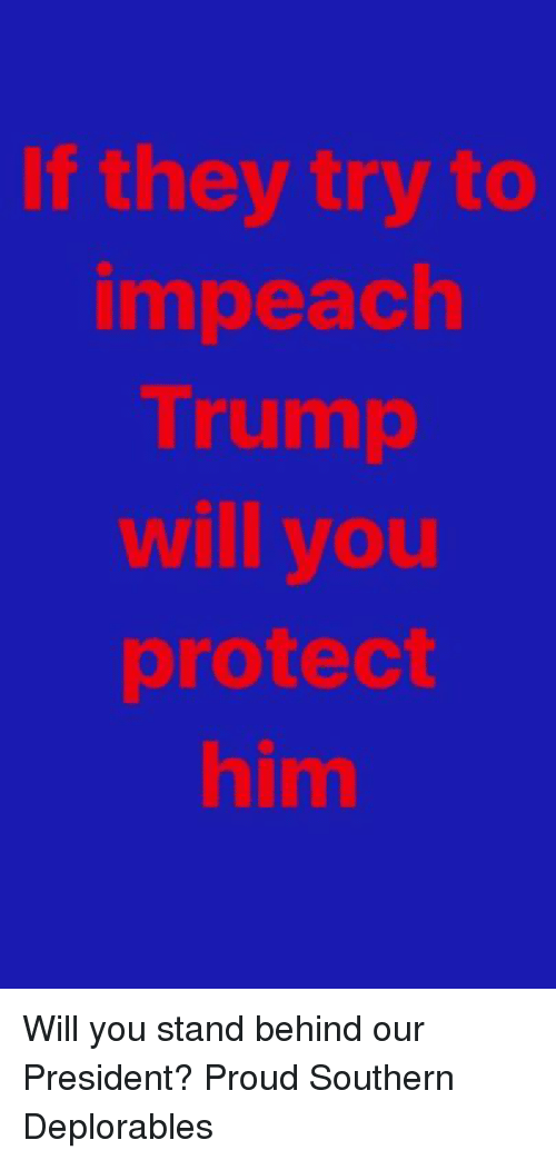 Deplorables: If they try to  impeach  Trump  will you  protect  him Will you stand behind our President? Proud Southern Deplorables