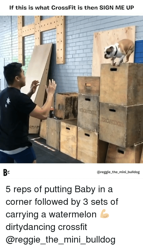 reps: If this is what CrossFit is then SIGN ME UP  B-  @reggie_the_mini_bulldog 5 reps of putting Baby in a corner followed by 3 sets of carrying a watermelon 💪🏼 dirtydancing crossfit @reggie_the_mini_bulldog