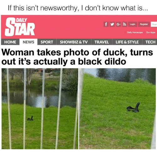 Dildo, Life, and News: If this isn't newsworthy, l don't know what is...  DAILY  f Y G. Login Register  Daily Horoscope our Apps  HOME  NEWS  SPORT  SHOWBIZ& TV  TRAVEL  LIFE & STYLE  TECH  Woman takes photo of duck, turns  out it's actually a black dildo