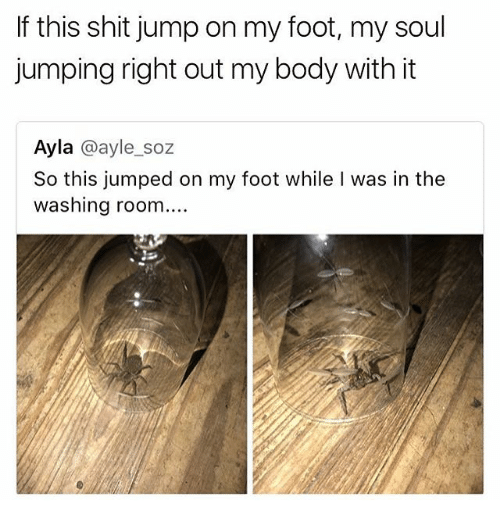 Memes, Shit, and Jumped: If this shit jump on my foot, my soul  jumping right out my body with it  Ayla @ayle_soz  So this jumped on my foot while I was in the  washing room