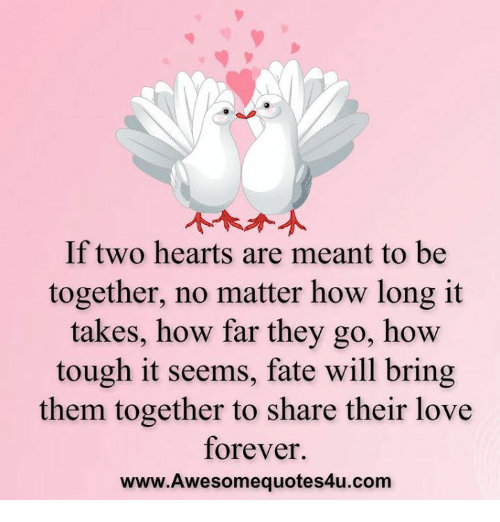 Love, Memes, and Forever: If two hearts are meant to be  together, no matter how long it  takes, how far they go, how  tough it seems, fate will bring  them together to share their love  forever.  www.Awesomequotes4u.com