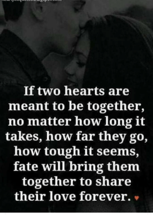 Love, Memes, and Hearts: If two hearts are  meant to be together,  no matter how long it  takes, how far they go,  how tough it seems,  fate will bring them  together to share  their love foreve  r. v