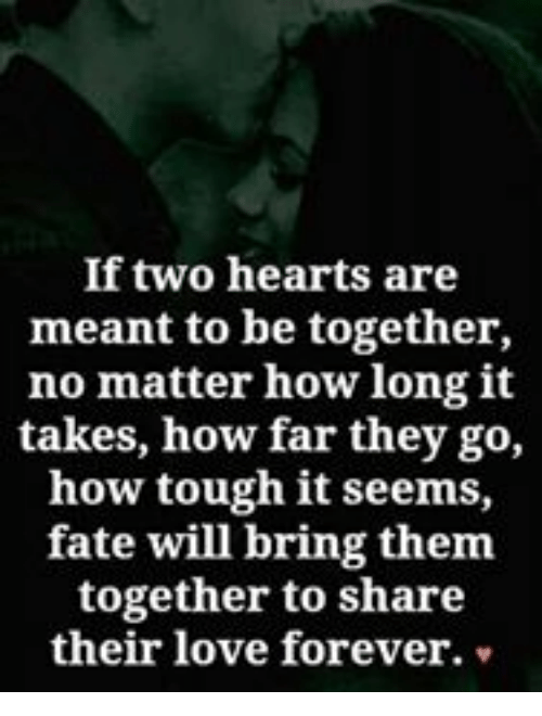 Love, Memes, and Forever: If two hearts are  meant to be together,  no matter how longit  takes, how far they go,  how tough it seems,  fate will bring them  together to share  their love forever.