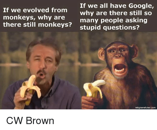 stupid questions: If we all have Google,  If we evolved from  Why are there still so  monkeys, why are  many people asking  there still monkeys?  stupid questions?  religionrefuted.com CW Brown