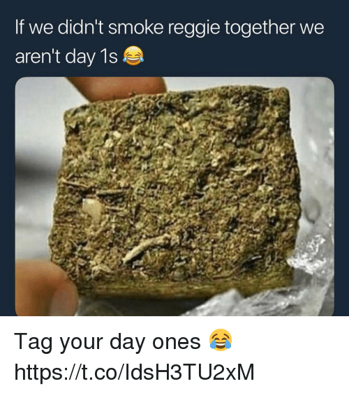 Reggie, Day, and Smoke: If we didn't smoke reggie together we  aren't day 1s Tag your day ones 😂 https://t.co/IdsH3TU2xM