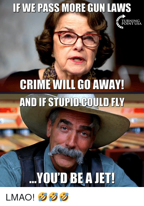 gun laws: IF WE PASS MORE GUN LAWS  TURNING  POINT USA  CRIME WILL GO AWAY!  AND IF STUPID COULD FLY  .YOU'D BEA JET! LMAO! 🤣🤣🤣
