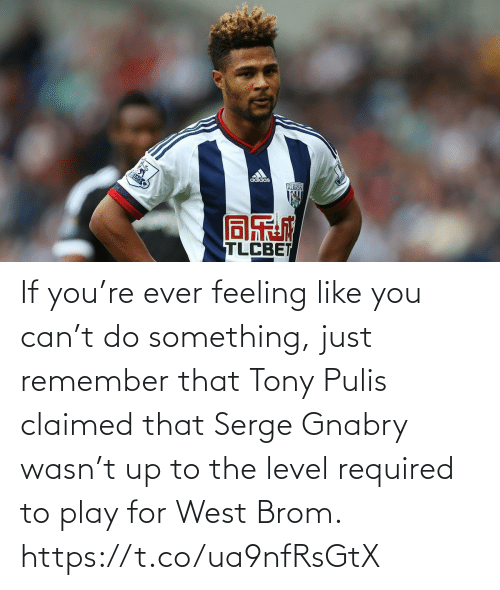 Like You: If you're ever feeling like you can't do something, just remember that Tony Pulis claimed that Serge Gnabry wasn't up to the level required to play for West Brom. https://t.co/ua9nfRsGtX