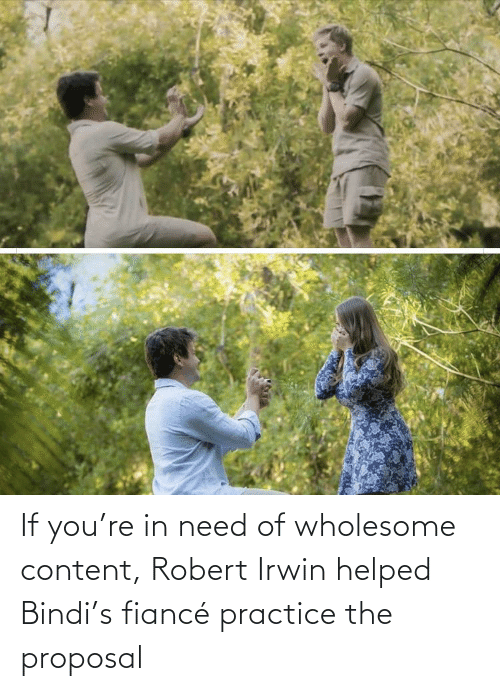 the proposal: If you're in need of wholesome content, Robert Irwin helped Bindi's fiancé practice the proposal