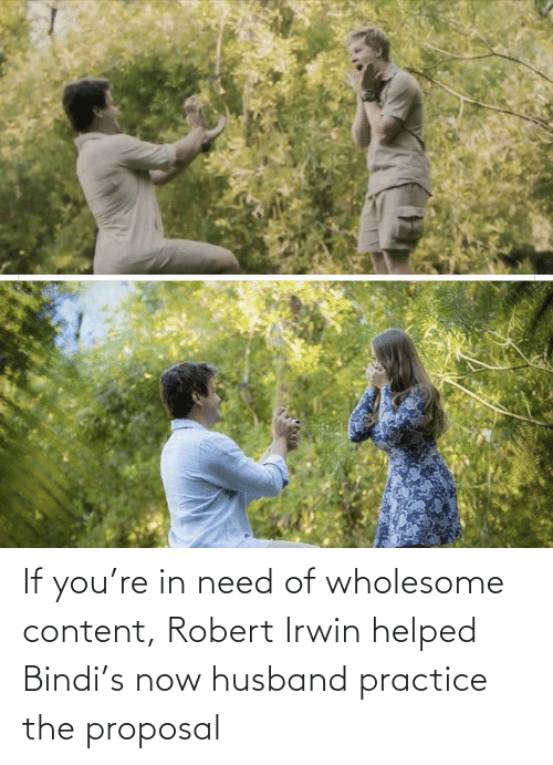 the proposal: If you're in need of wholesome content, Robert Irwin helped Bindi's now husband practice the proposal