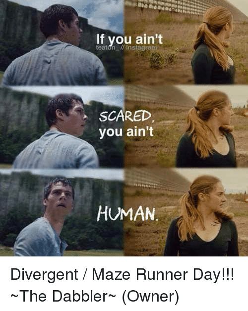 If You Ain't SCARED You Ain't HUMAN Divergent Maze Runner ...