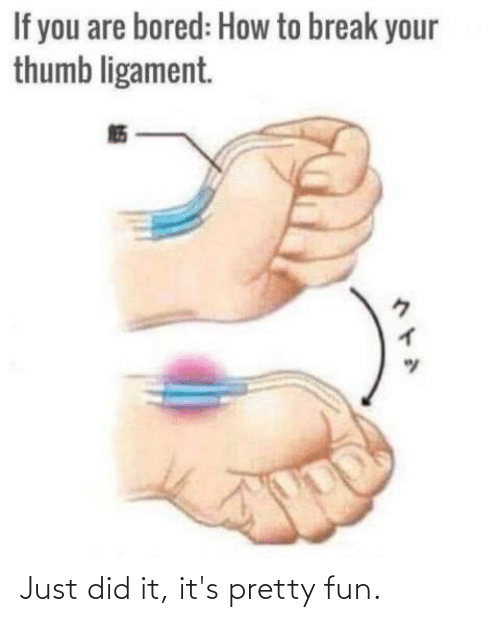 ligament: If you are bored: How to break your  thumb ligament.  ヘトA Just did it, it's pretty fun.